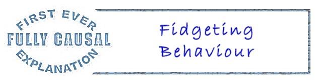 Fidgeting Behaviour